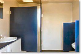vip_toilet2